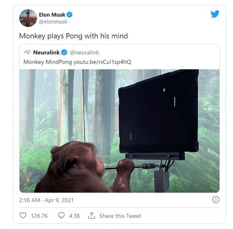 Neuralink - Elon Musk's tweet