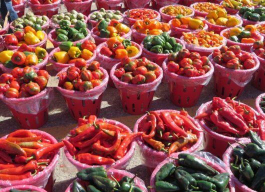 I vegetali sono importanti: ecco qualche cifra