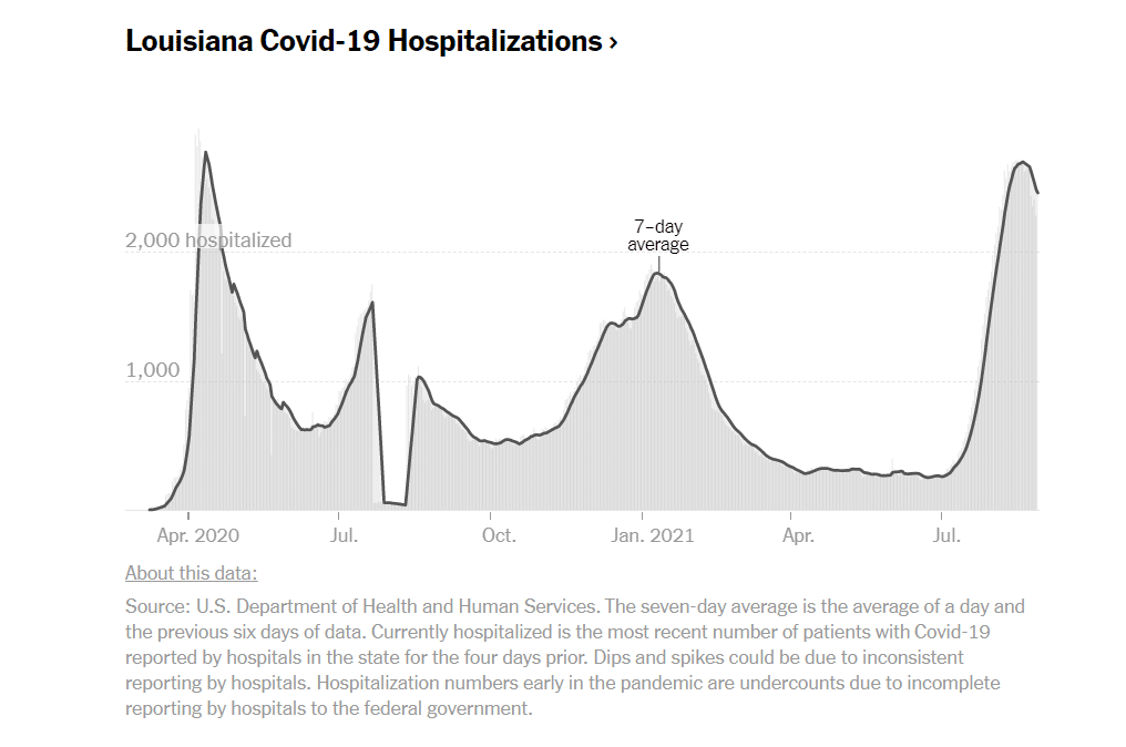 Andamento delle ospedalizzazioni in Louisiana a causa della pandemia da covid19. uragano Ida